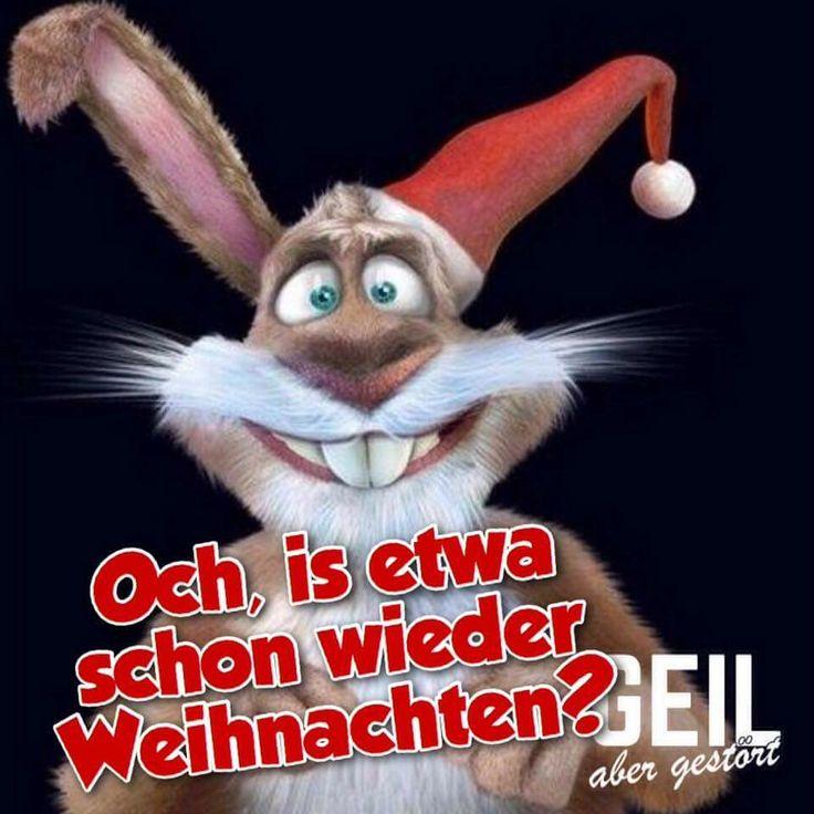 689 besten weihnachten bilder auf pinterest merry christmas schneemann und weihnachten - Lustige zitate weihnachten ...