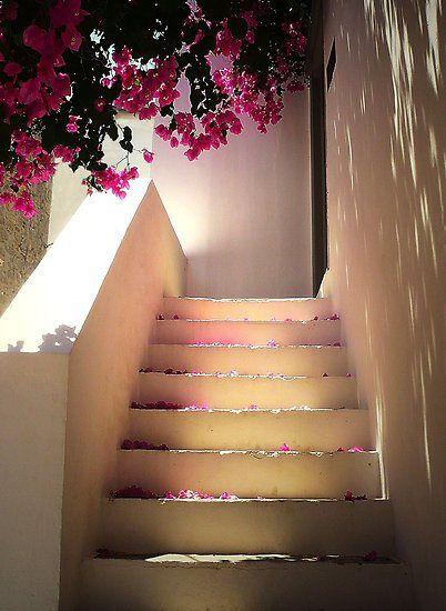 Bougainvillea Stairs, Santorini,Greece