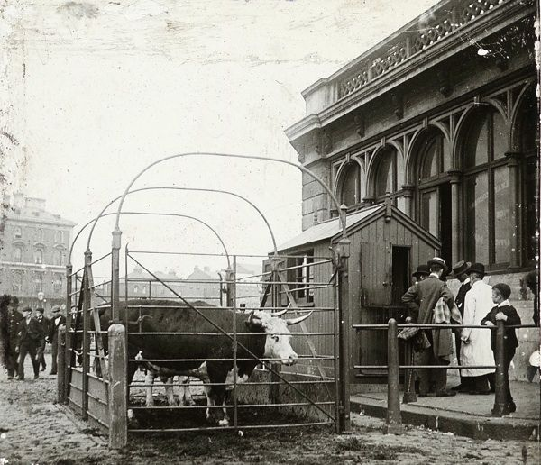 Caledonian Rd. Market 1910