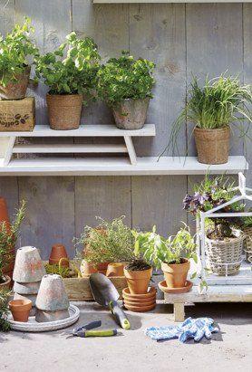 Garden workspace by Marlies Hofstede Photography ©