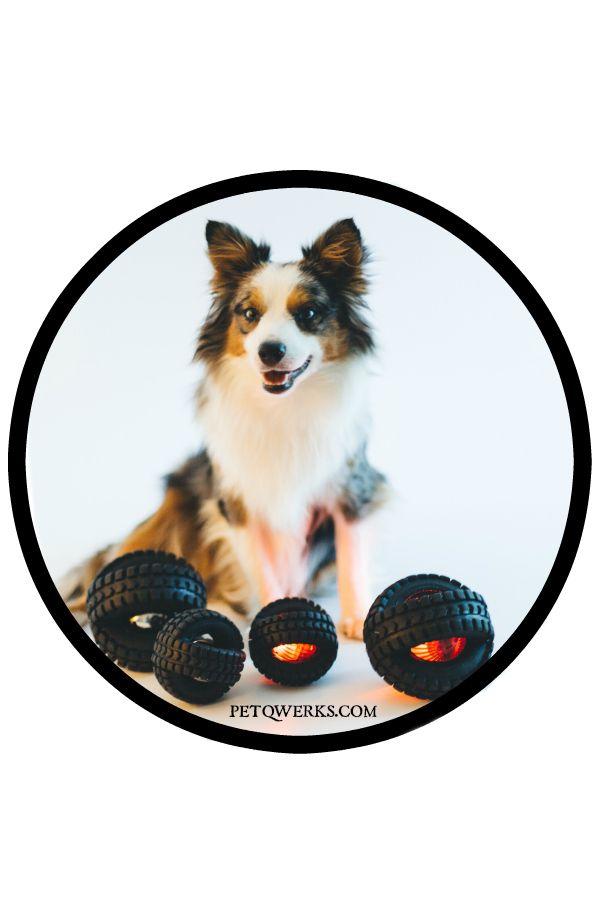 https://www.amazon.com/Pet-Qwerks-Large-Blinky-X-Tire/dp/B000CMHWQQ/ref=sr_1_1?ie=UTF8&qid=1504652433&sr=8-1&keywords=blinky+x+tire+ball