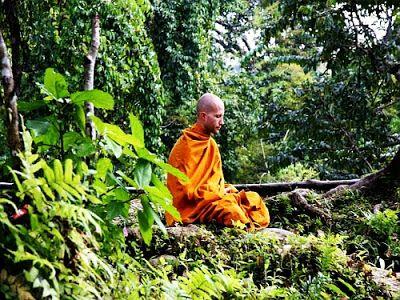 Wisdom Path: A Zen Master Reveals a Little Known Mindfulness St...