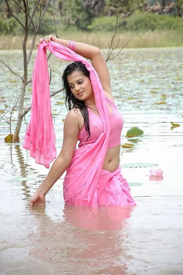 Pin By Haris Shaikh On Bhabhi Pinterest Indian Actresses Actresses And Saree
