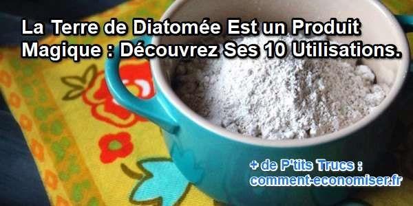 C'est quoi la terre de diatomée ? Et comment l'utiliser ?