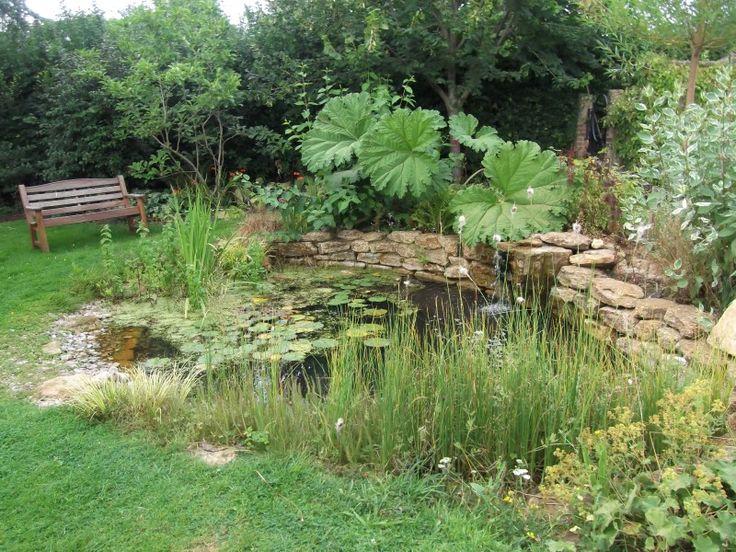 Best 25 garden ponds ideas on pinterest ponds pond for Design wildlife pond