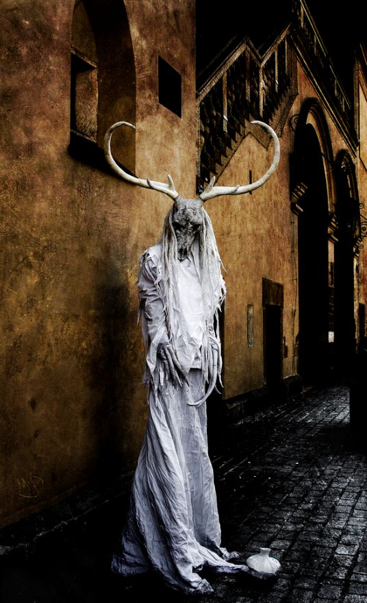 Amazing goat-themed fashion photography!