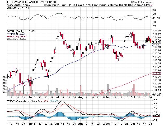 iShares TIPS Bond ETF (NYSEArca: TIP)