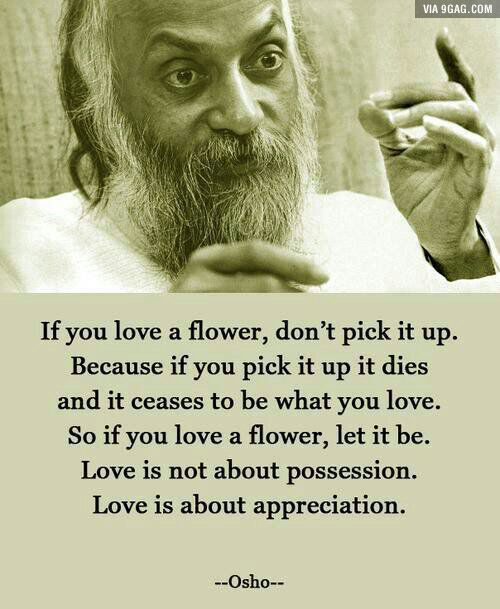 A great quote on love