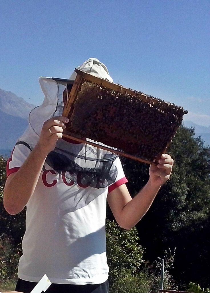 Ο Στράτος επιθεωρώντας τα μελίσσια στα ορεινά της Πίνδου.