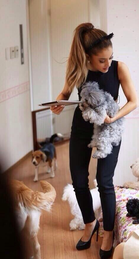 Helping these dogs♡ #arianagrande