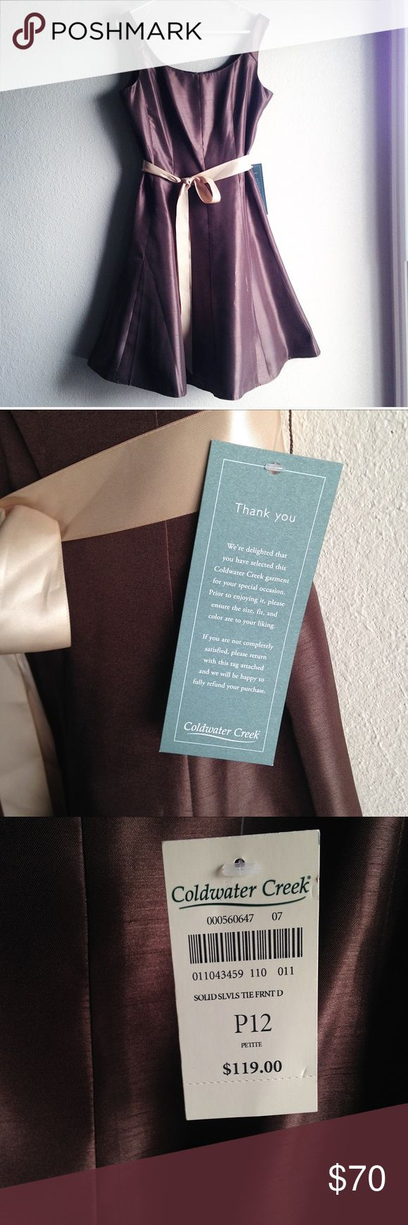 NWT Brown Coldwater creek dress size 12P This is new with tags never been worn Coldwater creek dress is perfect for any event :-) complete with a cream ribbon and a zipper in the back  petite size 12 women's dress will be great for your wardrobe. Coldwater Creek Dresses