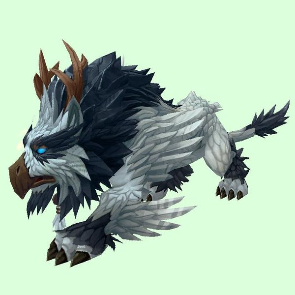 Silver Grey Owlcat Character Art Pets World Of Warcraft