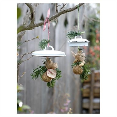 Decorative bird feeders hanging from tree