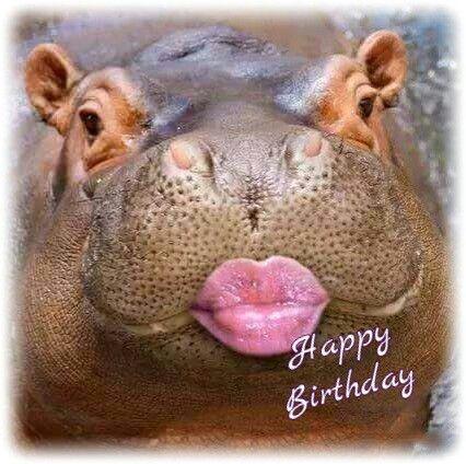 #Happy Birthday ---   http://tipsalud.com   -----