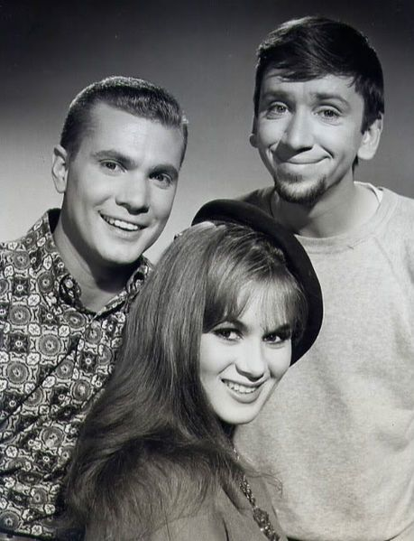 The Many Loves of Dobie Gillis is an American sitcom that aired on CBS from 1959 to 1963.