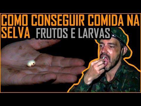 Água na Selva - Obtenção, Filtragem e Purificação (1oBIS de Manaus) - YouTube