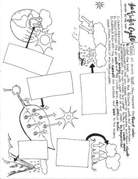 364 best Water Cycle ☁ Projects & Ideas for Kids images on