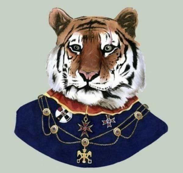 Тигр в одежде картинки