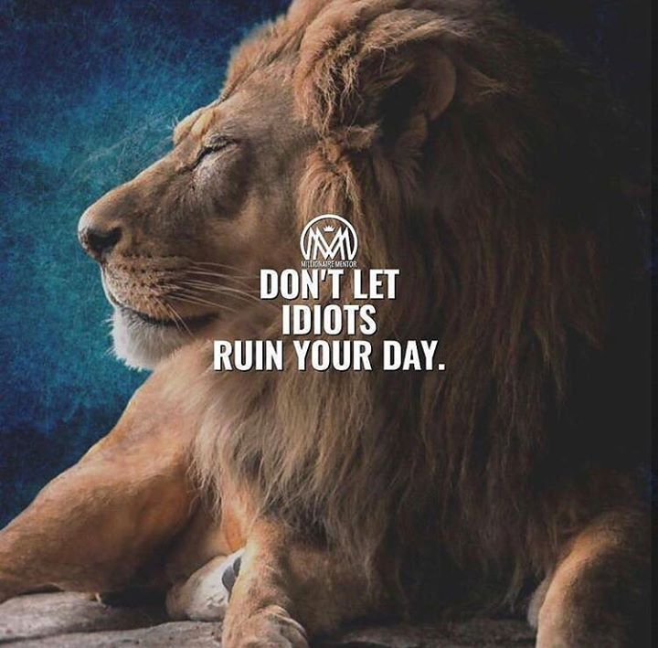 Positive Quotes :    QUOTATION – Image :    Quotes Of the day  – Description  Dont let idiots ruin your day.  Sharing is Power  – Don't forget to share this quote !    https://hallofquotes.com/2018/04/06/positive-quotes-dont-let-idiots-ruin-your-day/