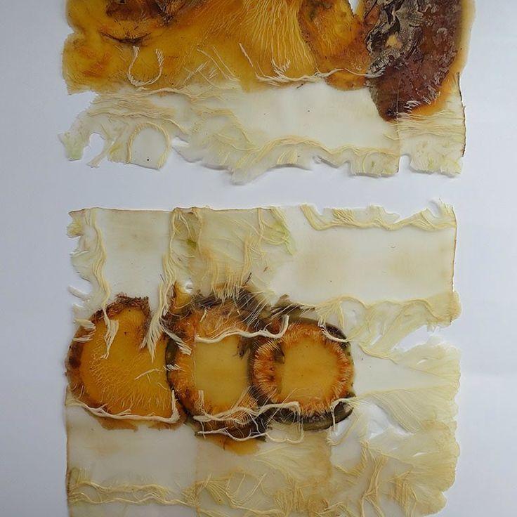 Detail van Groenteabstracten serie 11 #1 en #2. Gemaakt van de stronk van bloemkool en daarbij koolraap als tweede groente. - Vegetable and abstract series 11, detail of #1 and #2. Detail of these two small works, made of cauliflower stumps and rutabaga peels. - #angeliquevandervalk #vegetableworks #studioangeliquevandervalk #art #visualart #abstract #abstractart #minimalist #contemporaryart #waste #material #detail