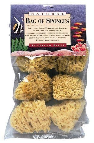 Sponges Natural Sea 6/Pk Asstd by Hydra. $18.90. For the many effects and artistic touches that only a natural sponge can provide. Create designs for sponge painting, texturizing, or marbleizing. Blister-carded.