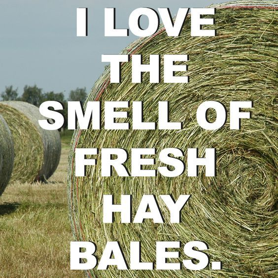 I Love The Smell Of Fresh Hay Bales · Country Girl QuotesCountry ...