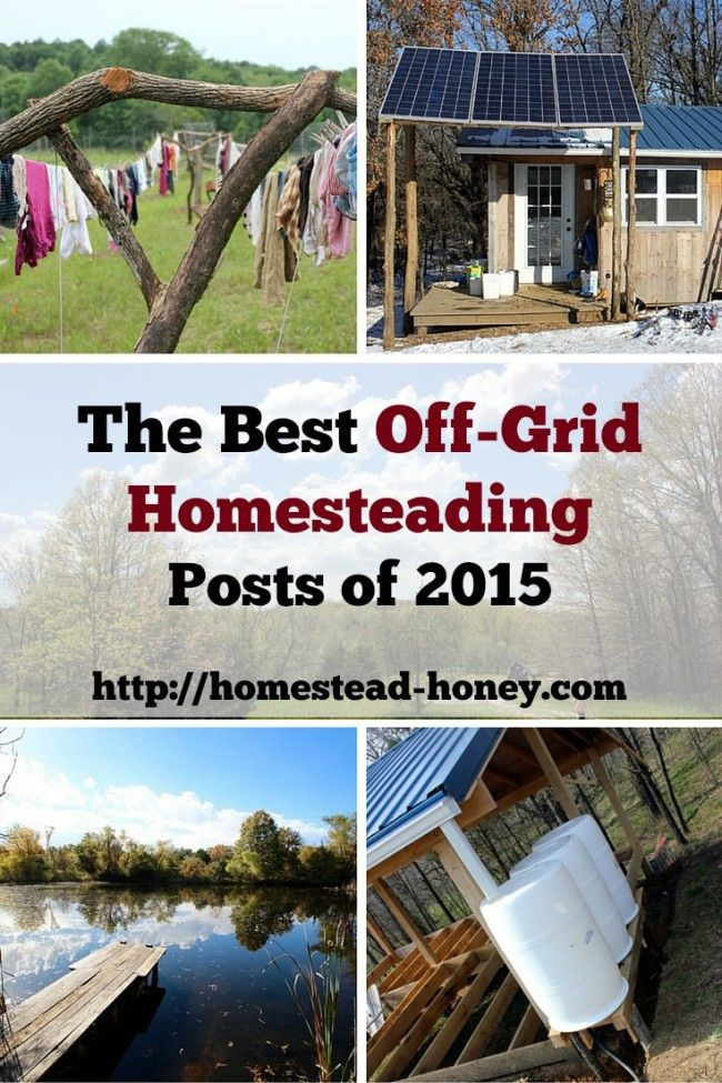 Ring in the New Year with a celebration of off-grid homesteading! These ten posts will inspire your off-grid homesteading journey in the New Year.