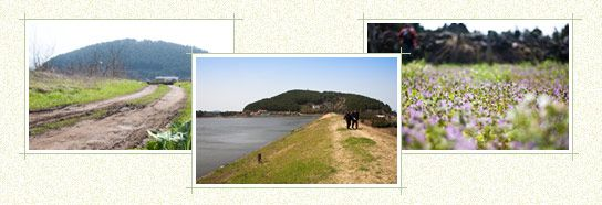 Official Site of Korea Tourism Org.: Jeju Olle _Route 16