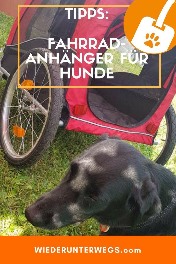 Fahrradanhänger für Hunde: Coffee fährt Rad? | Tipps und Test.
