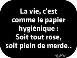 La vie, c'est comme le papier hygiénique : Soit tout rose, soit plein de merde.. - foozine.com