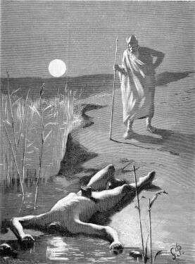 Mime (norrønt Mímir) er en av jotnene eller æsene i norrøn mytologi, og ble regnet som den klokeste av alle. Han voktet kunnskapens brønn, Mimes brønn, som ligger under ei av røttene til verdenstreet Yggdrasil. Mime er også fremstilt som et norrønt motstykke til gresk mytologis orakel når Mimes avskårne hode omtales som Odins rådgiver.