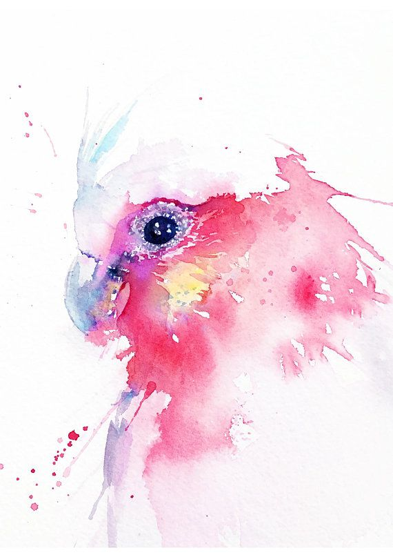 Pink Galah Painting Watercolor Bird Digital Download Bird Art