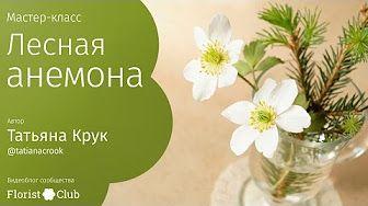 (153) FloristClub - YouTube
