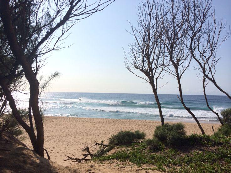 Saldana bay -South Africa