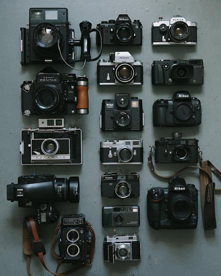 Best 25+ National camera ideas on Pinterest | Spring in usa ...