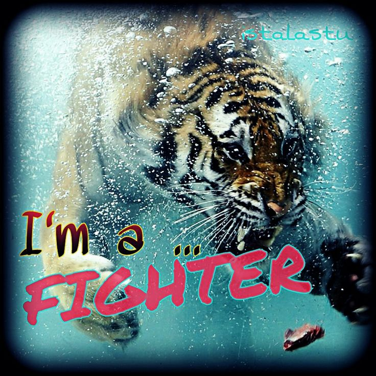 I'm a fightet quotes