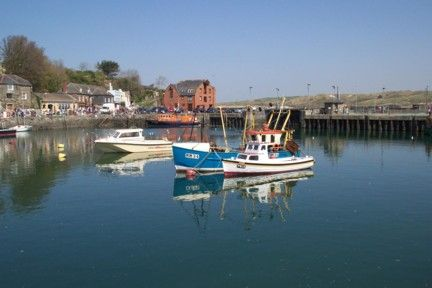 Padstow Early Summer