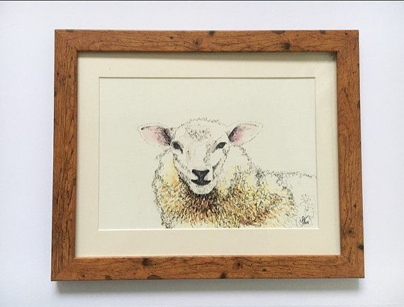 Sheep illustration drawing watercolour painting by Sarahnicknicks