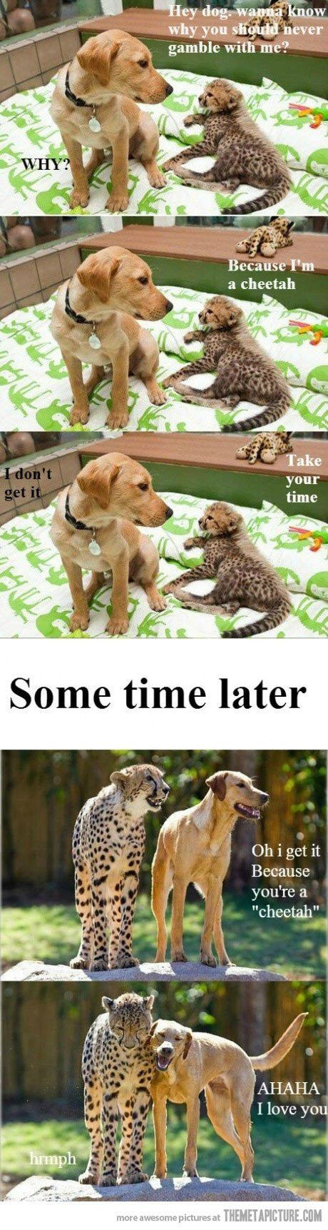 Take your time... on we heart it / visual bookmark #55323029