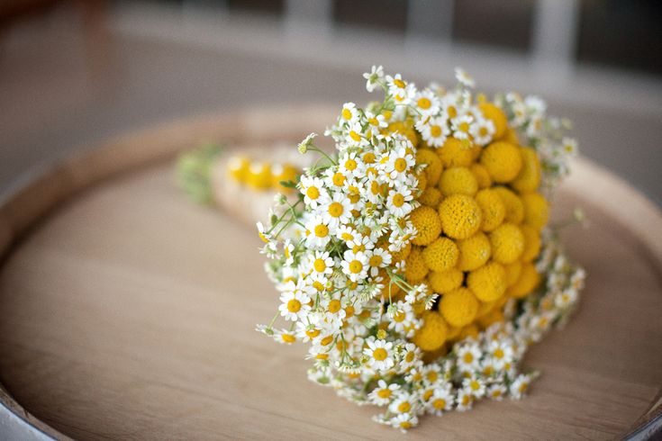 Billy Button and Chamomile boquet