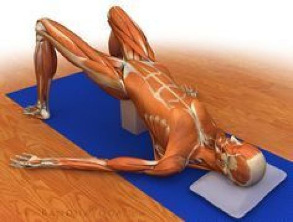 The Daily Bandha: Healing with Yoga: Piriformis Syndrome ...