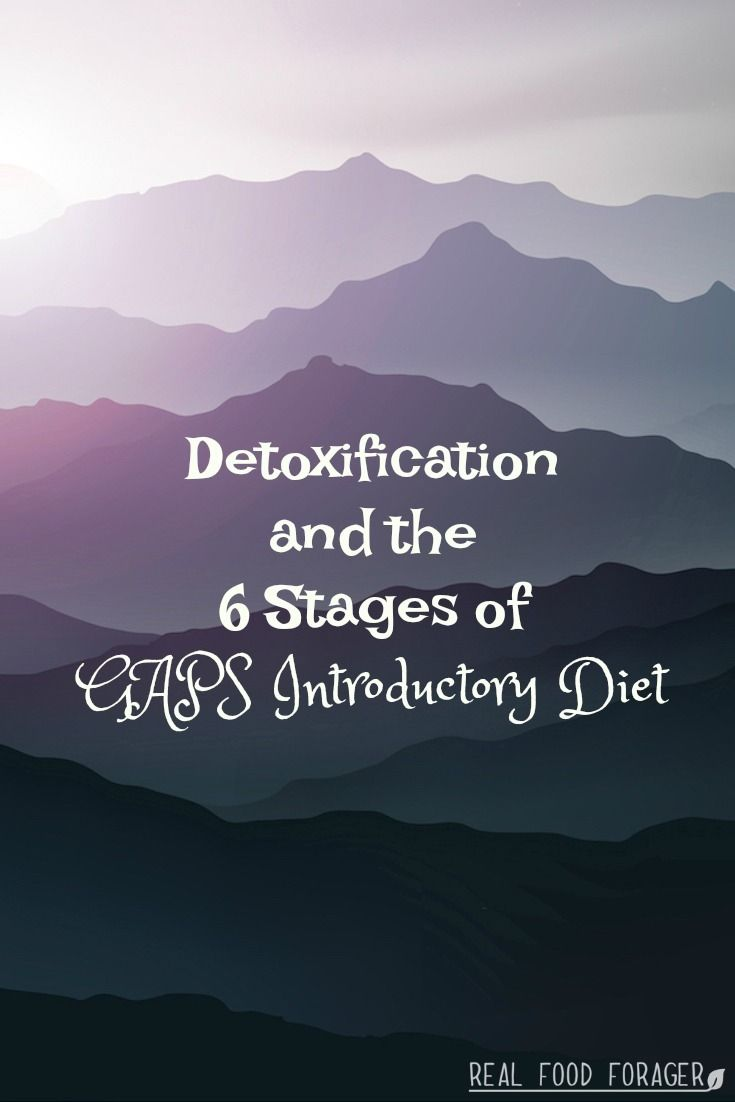 Detoxification and the 6 Stages of GAPS Introductory Diet. Detoxification can be tricky. I like to use the 6 stages of GAPS before using any other methods.