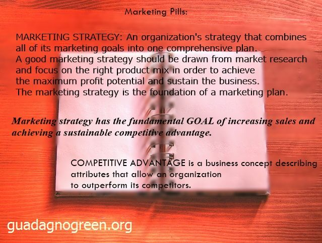 What is a Marketing Strategy?