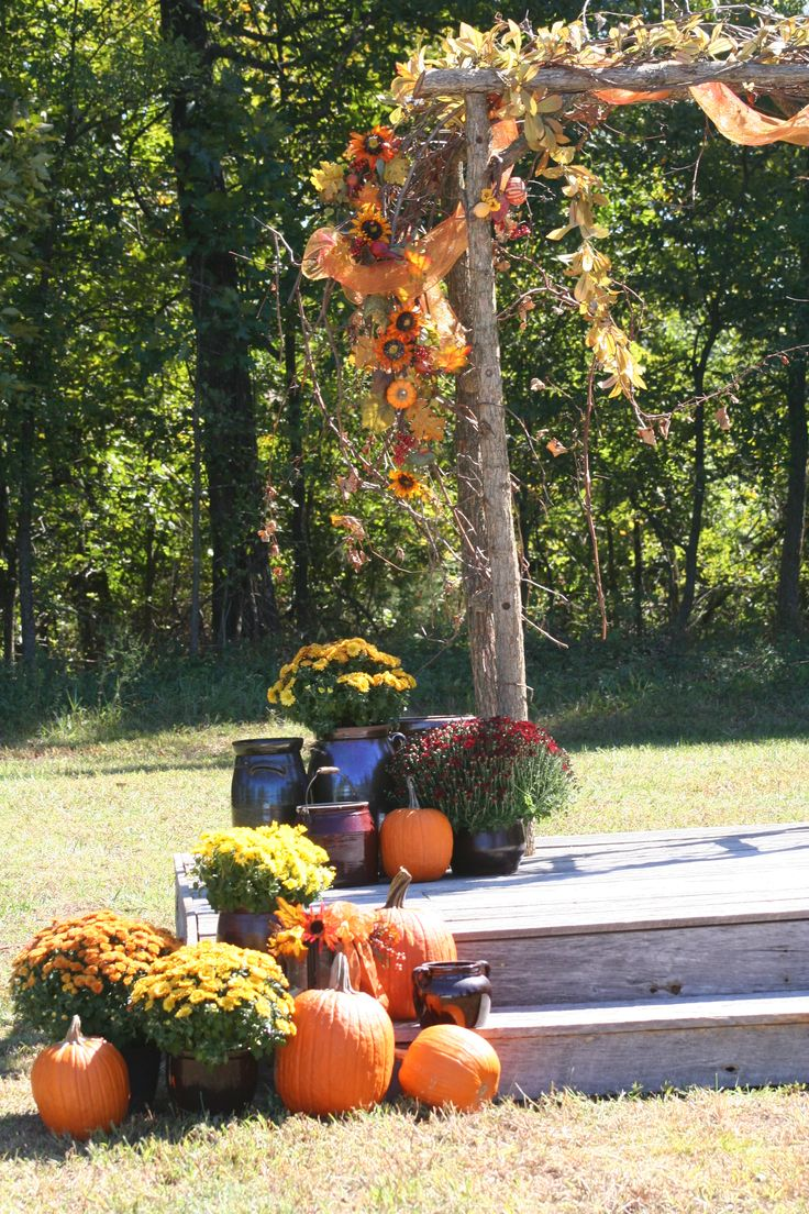 Rustic Country Fall Wedding Arch. Decorated with sunflowers, grapevines, orange tulle, crocks filled with mums and pumpkins.