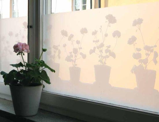 Fönsterfilm Pelargon i kruka, Siluett Frost i gruppen Fönsterfilm & Fönsterskärmar hos HouseofHedda.com (LADPPelargonLarger)