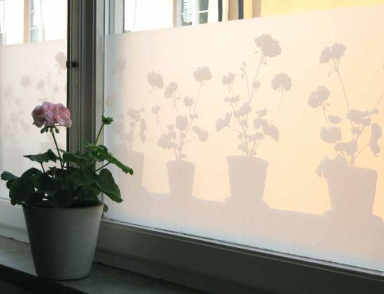 Fönsterfilm Pelargon i kruka, Silhuett Frost i gruppen REA hos HouseofHedda.com (LADPPelargonLarger)