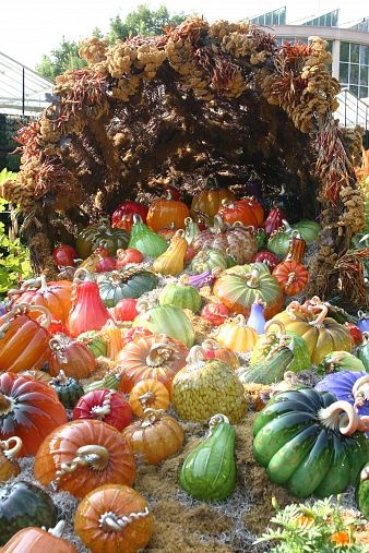 Blown glass pumpkins and squash. These are really beautiful, would be a lovely accent in the fall