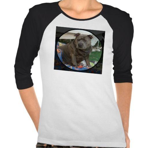 T-Shirt | English Staffordshire Bull Terrier dog