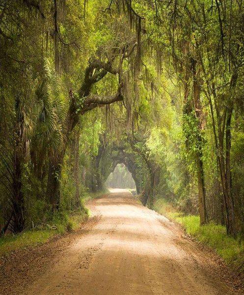 Botany Bay Plantation - South Carolina