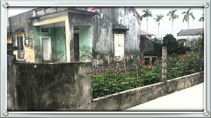 Bike ride photos #vietnam #haiphong